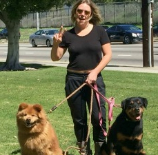 Kamora has a Chow sister to show her the ropes of home living. No more backyards for Kamora. She's an inside dog now!