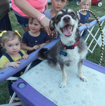 Is this a happy face or what? Glover found his calling with Dynamo Dogs - a famous dog performing act