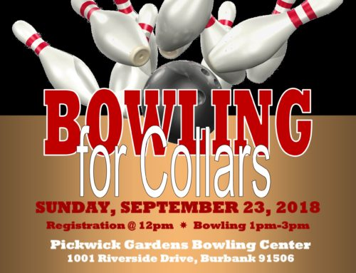 BOWLING FOR COLLARS 2018