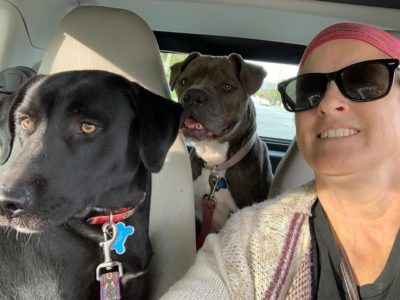Dublin not only has a new family, she is on her way to meet some new friends!!!!