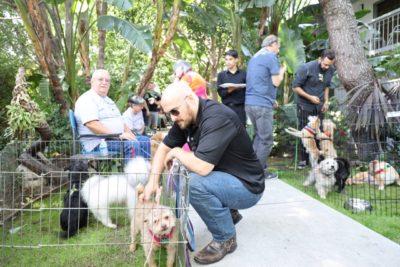 Dog Rescue – Dawg Squad