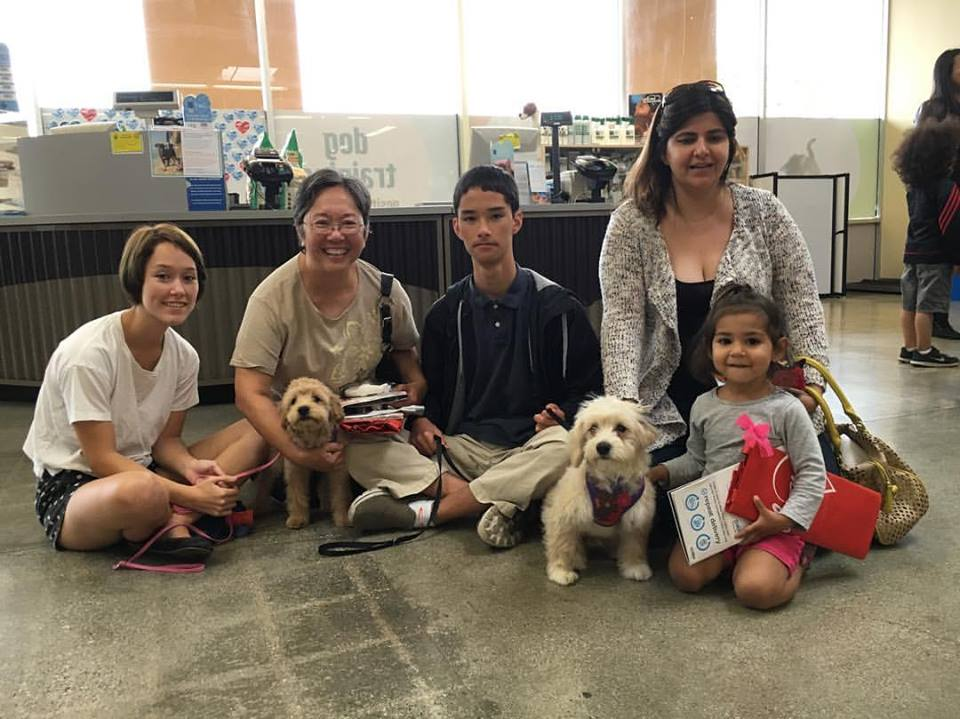 Biscuit and Cupcake were both adopted by doting families